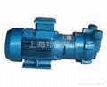 SKA水循环真空泵