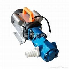 WCB型手提式齿轮输油泵