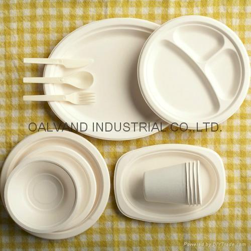 Semi-automatic Disposable Tableware production line 1