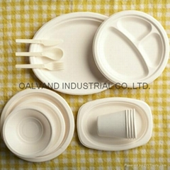 Semi-automatic Disposable Tableware production line