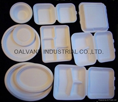 Sustainable Biodegradable Sugarcane Tableware