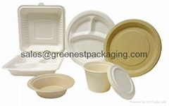 Biodegradable Compostable Disposable Sugarcane/Bagasse Tableware