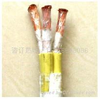 安徽YVFRP YVFRP耐寒电缆