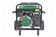 EPA/CSA approved 120V240V generator