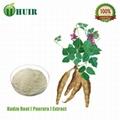 Kudzu root extract 3