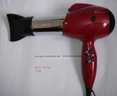 Anion Professional Hair Dryer