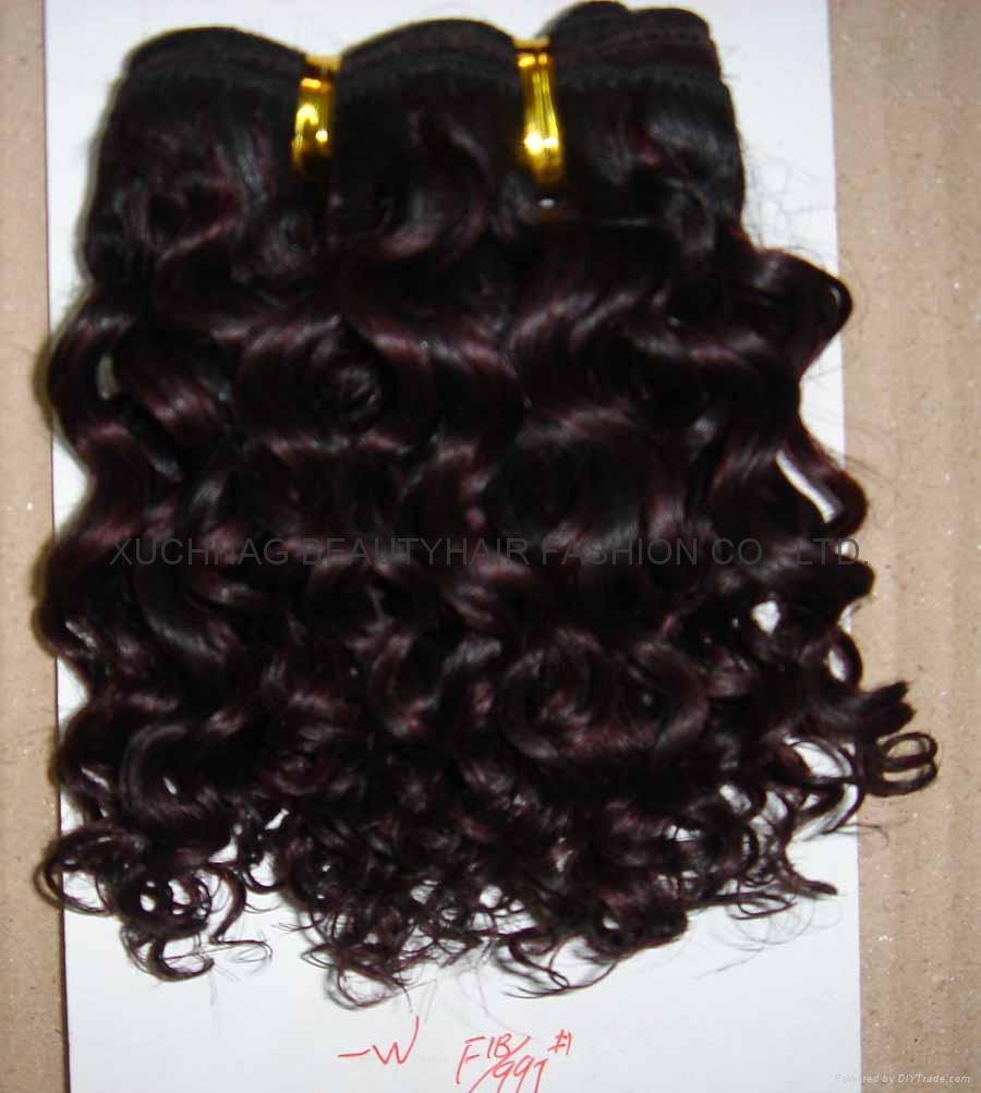 Human Hair Extensions Care 43