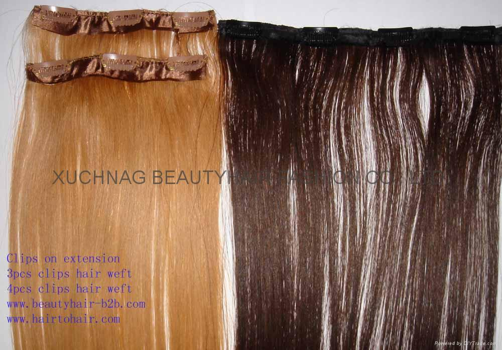 wavy straight style clips on extension clip ins beautyhair china manufacturer personal. Black Bedroom Furniture Sets. Home Design Ideas