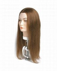 training mannequin head,