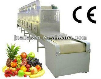 Dried fruits microwave drying equipment-fruit slice dryer machine 2