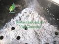Non toxic 100% natural mangrove wood charcoal for hookah shisha 1