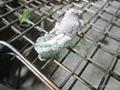 Non toxic 100% natural mangrove wood charcoal for hookah shisha 4