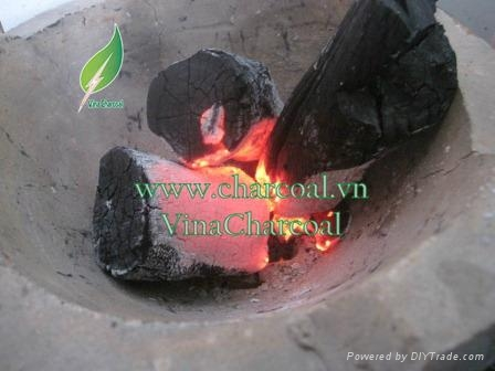 Good price long burned time quality wood charcoal pomelo charcoal 3