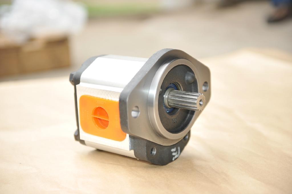 泊姆克高压齿轮泵马达 1