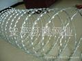 刀片刺绳 5