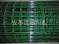 浸塑电焊网 3