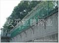 Y型监狱护栏网 2