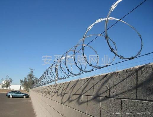Y型監獄護欄網 3