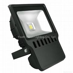 100W LED Flood Light 120V 220V 230V 240V with high brightness and high quality C