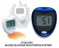 Blood Glucose Monitor System