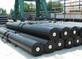 重慶廠家生產價格防滲膜土工膜養