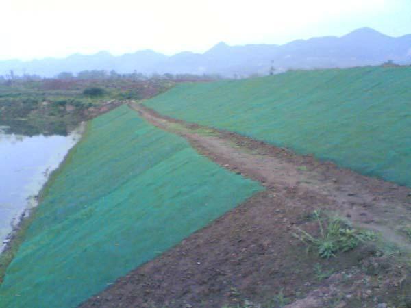 重慶廠家生產綠化種植三維植被網 1