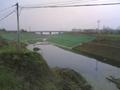 重慶廠家生產綠化種植三維植被網 2