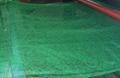 重慶廠家生產綠化種植三維植被網 4