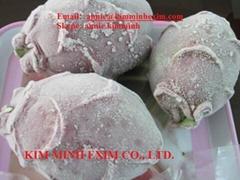 Frozen Dragon Fruits (whole)