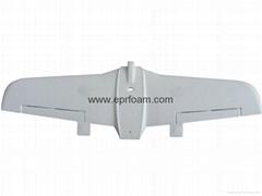 EPO model airplane