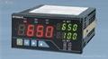 SPT650M稱重顯示器