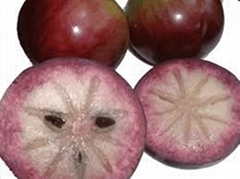 fresh star apple