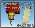 消防高位水箱用挡片式流量开关 LZ-01 1