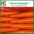 Fresh carrots 4