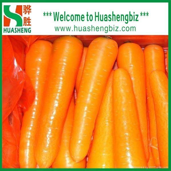 Fresh carrots 5