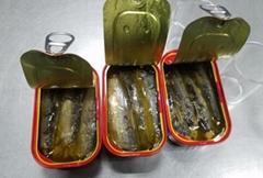 Best canned sardine fish price125g