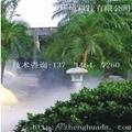 園林景觀造霧設備LD-0150 4