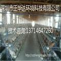 养鸡场喷雾降温工程设备