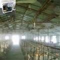 养殖场喷雾杀毒设备