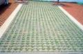 陶土草坪磚 5