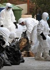 杜邦鸡禽流感病毒专用防护服