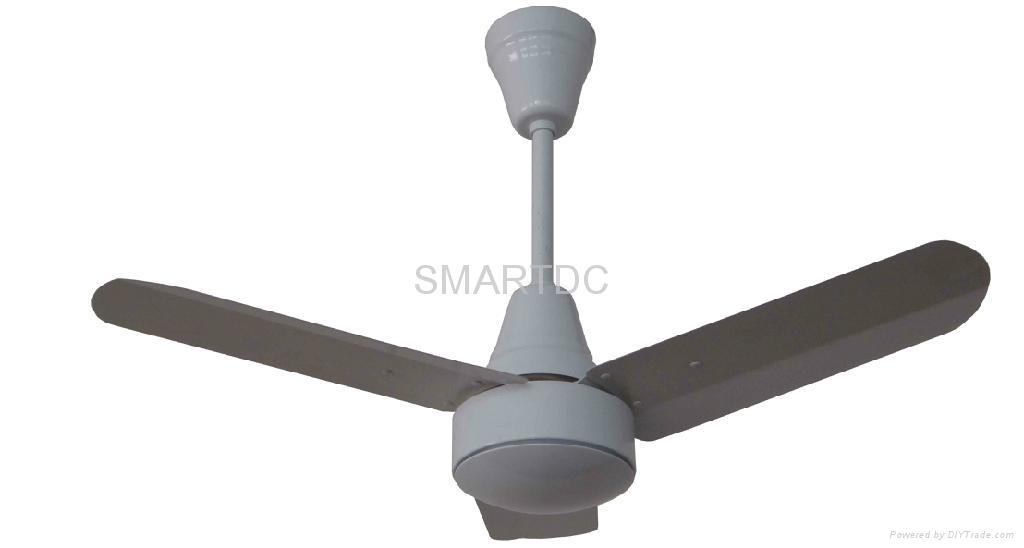 DC 12V/24V ceiling fan 3