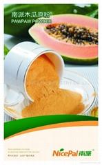 Natural Instant Papaya powder
