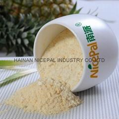 Natural Pineapple Juice Powder/ Pineapple Powder Fruit Juice