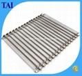 Stainless Steel Wire Mesh Conveyor Belt Chain 1