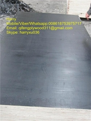black and brown film faced plywood for construction
