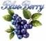 BLUEBERRY IMPEX CO.,LTD