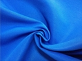 Nylon Taslon fabric(H751)