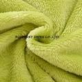 Coral fleece fabric 12