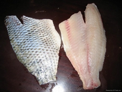 Frozen Tilapia Skin-on Fillet